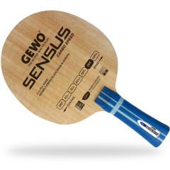 GEWO Holz Sensus Carbo Speed